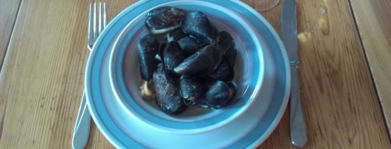 Recept: vinkokta mjölkfria blåmusslor