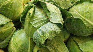 kål en grönsak låg i oxalater